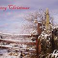 Western Christmas by David S Reynolds