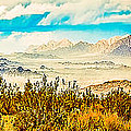 Western Panorama From Mountain At Joshua Tree National Park by Bob and Nadine Johnston