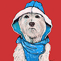 Westie In A Blue Slicker by Dale Moses