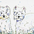 Westie Love by Shaina Stinard