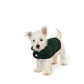 Westie Puppy In A Coat by Natalie Kinnear