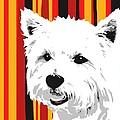 Westie With Stripes by Cindy Edwards