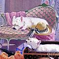 Westies Home by Candace Lovely