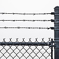 Wet Barbed Wire Fence In Heavy Fog E69 by Wendell Franks