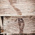 Wet Feet Prints by Tim Hester