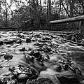 Wet Rocks by CJ Schmit