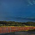 Wetland Barrier by Tony Ambrosio