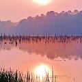 Wetlands Sunrise by JC Findley