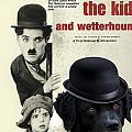 Wetterhoun-frisian Water Dog Art Canvas Print - The Kid Movie Poster by Sandra Sij
