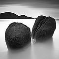 Whales by Mohd Rizal Omar Baki