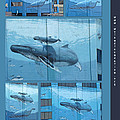 Whaling Wall 42 -  East Coast Humpbacks - Original Painting By Wyland by Mother Nature