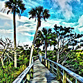 What A Beautiful Boardwalk by Alice Gipson