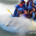 White Water Rafting What A Rush by Bob Christopher
