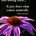 What Comes Naturally by Beth Sawickie