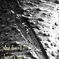 What Doesn't Kill Leaves A Scar by Chalet Roome-Rigdon