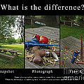 What Is The Difference by Peter Piatt