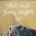 What Would Jimmy Buffett Do by Edward Fielding