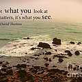 What You See by Stella Levi