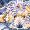 Wheaten Terrier Painting by Maria Reichert