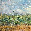 Wheatfield With Lark by Vincent van Gogh