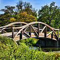 Wheaton Northside Park Bridge by Christopher Arndt