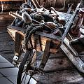 Wheelbarrow At Shipyard by Ri Davidson