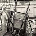 Wheelbarrows  by Cathy Anderson