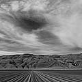Wheeler Ridge by Mike Herdering