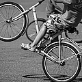 Wheelie Boys by Ari Salmela