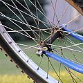Wheeling by Susie Rieple