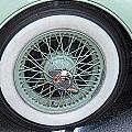 Wheels by Brenda Hackett