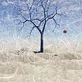 When The Last Leaf Falls... by John Edwards