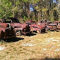 Where Old Vehicles Go by Lew Davis