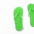 Where On Earth Is Spring - My Green Flip Flops Are Waiting by Andee Design