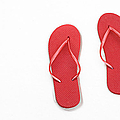 Where On Earth Is Spring - My Red Flip Flops Are Waiting by Andee Design
