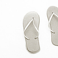 Where On Earth Is Spring - My Silver Flip Flops Are Waiting by Andee Design