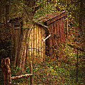 Which Way To The Outhouse? by Priscilla Burgers