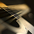 While My Guitar Gently Weeps by Laura Fasulo