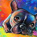 Whimsical Colorful French Bulldog  by Svetlana Novikova