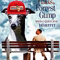Whippet Art - Forrest Gump Movie Poster by Sandra Sij