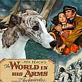 Whippet Art - The World In His Arms Movie Poster by Sandra Sij