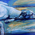 Whippet-effects Of Gravity-6 by Derrick Higgins
