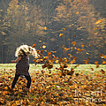 Whirling With Leaves by Carol Lynn Coronios