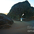 Whispering Arch by Marcus Angeline