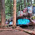 Whistler Train Wreckage Among The Trees by Adam Jewell