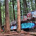 Whistler Train Wreckage In The Trees by Adam Jewell