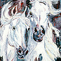 White Arabians by LC Herst