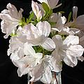 White Azalea Bouquet In Glass Vase by Connie Fox