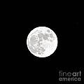 White Balance Full Moon by Bridgette Gomes