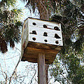 White Birdhouse by Lisa Williams